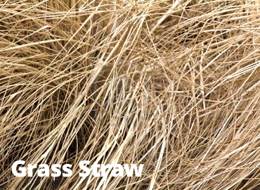 featured_grassstraw